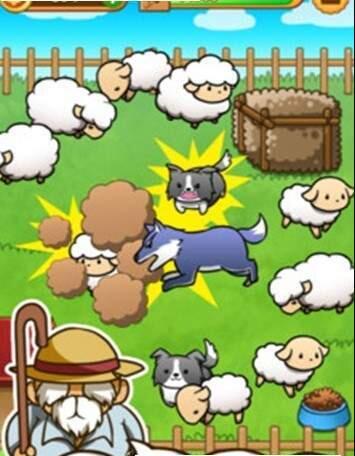 绵羊大集合