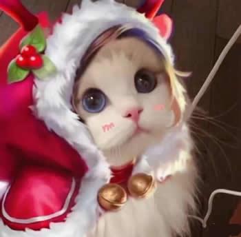 王者荣耀猫咪头像